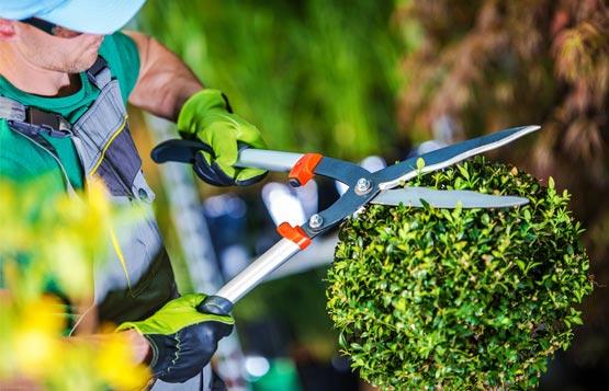Gardening Tool Sharpening Service
